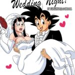 Wedding Night! – Dragon Ball